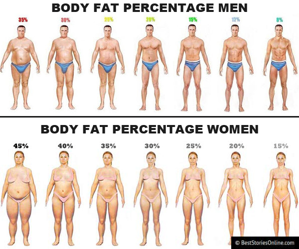 Body fat percentage chart showing both men and women.